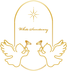 WS logo カラーグラデ final