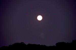 中秋の名月の満月_DSC8760