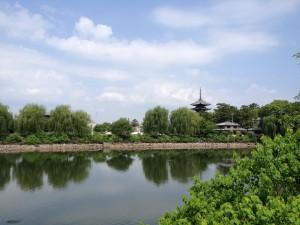 奈良IMG_1262